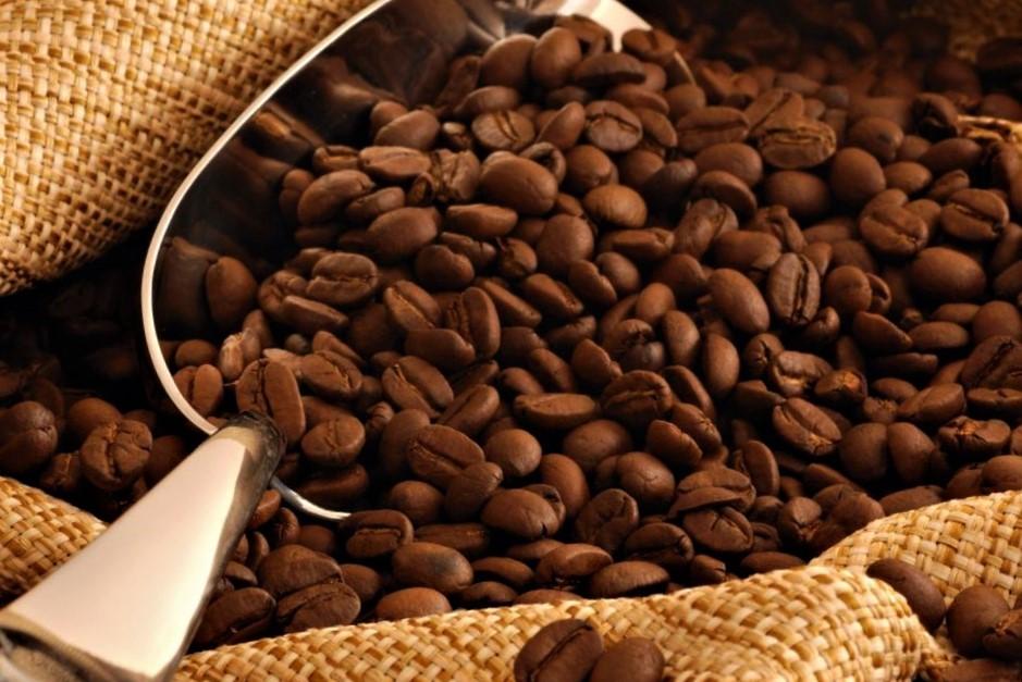 поставщик кофе