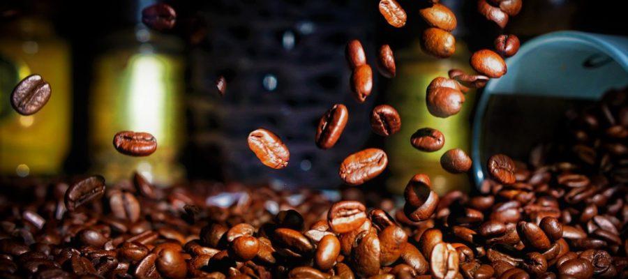 кофе арабика разновидности